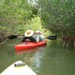 cocoa beach kayak rental