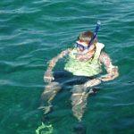 snorkel trips from key largo