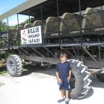 swamp buggy at Billie Swamp Safari