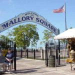 Key West Mallory Square Video