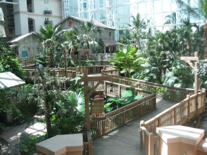 Walkways through the Orlando Gaylord Palms resort and spa