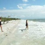 things to do in naples fl