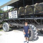 swamp buggy at Billie Swamp Safari