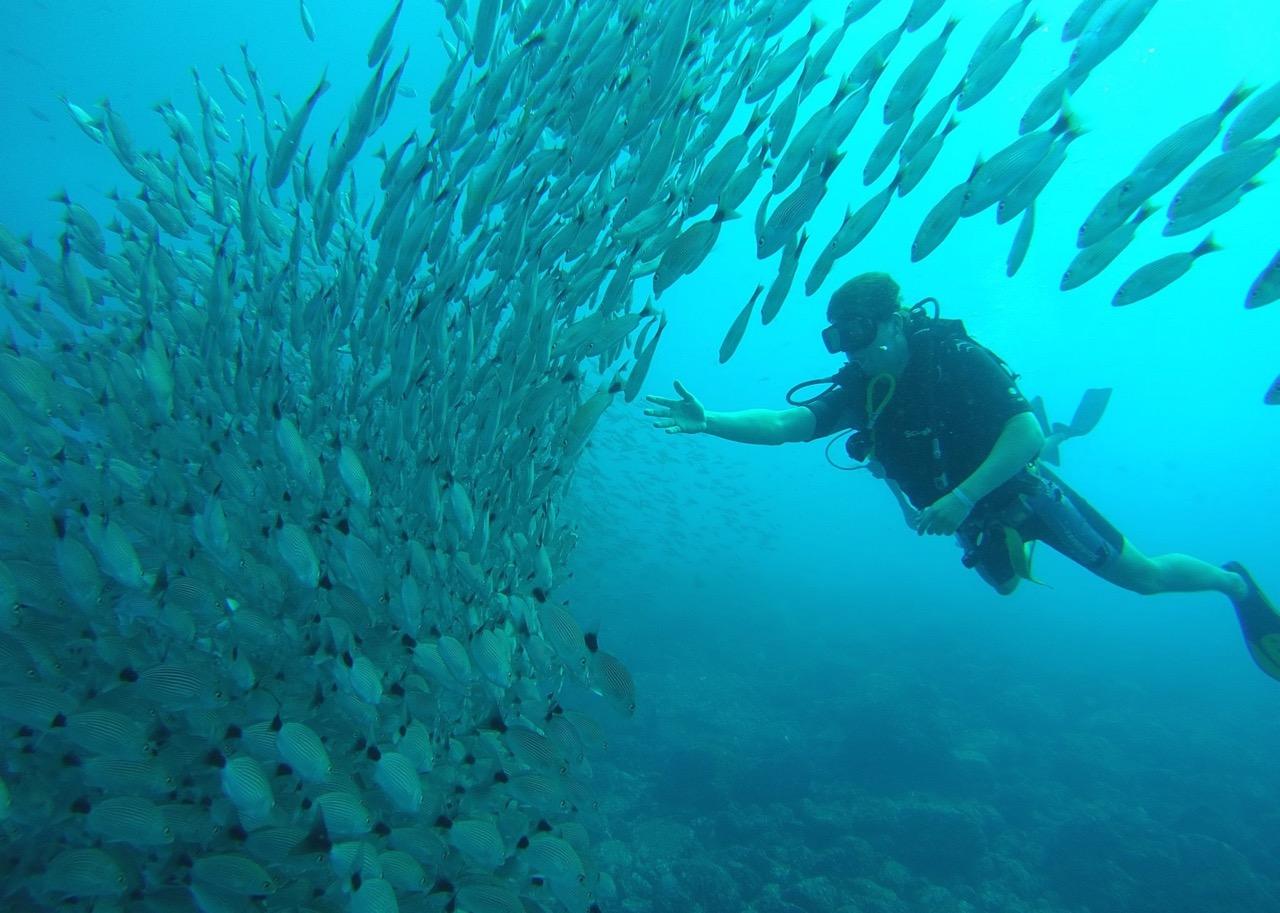 Costa Rica's Scuba Diving Pioneer