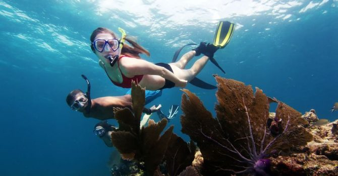 Florida's Upper Keys – Great Scuba Diving And Eco Friendly Tours