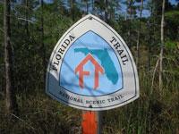 Florida-Trail-Big-Cypres5