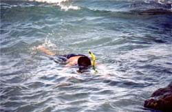 boysnorkeling
