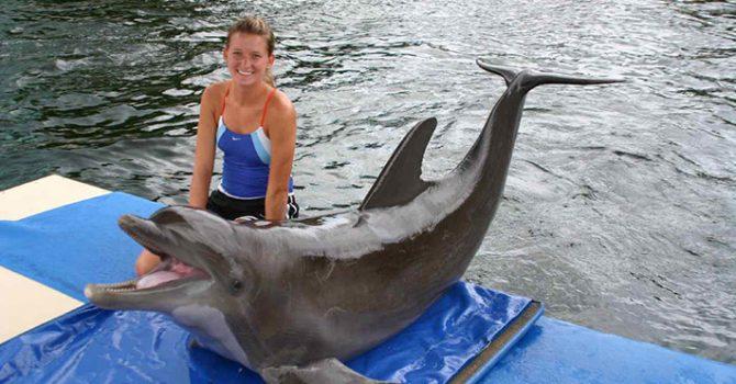 Meet Nicki LaPierre Marine Mammal Training – Florida Keys