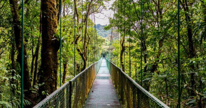 Costa Rica Vacation – My Whole Family Enjoyed