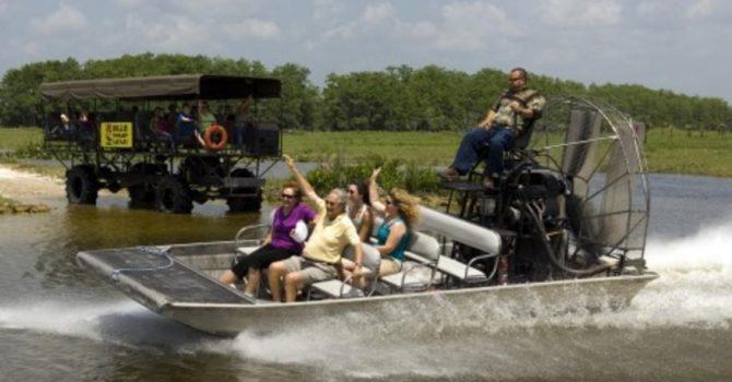 A Day At Billie Swamp Safari Review