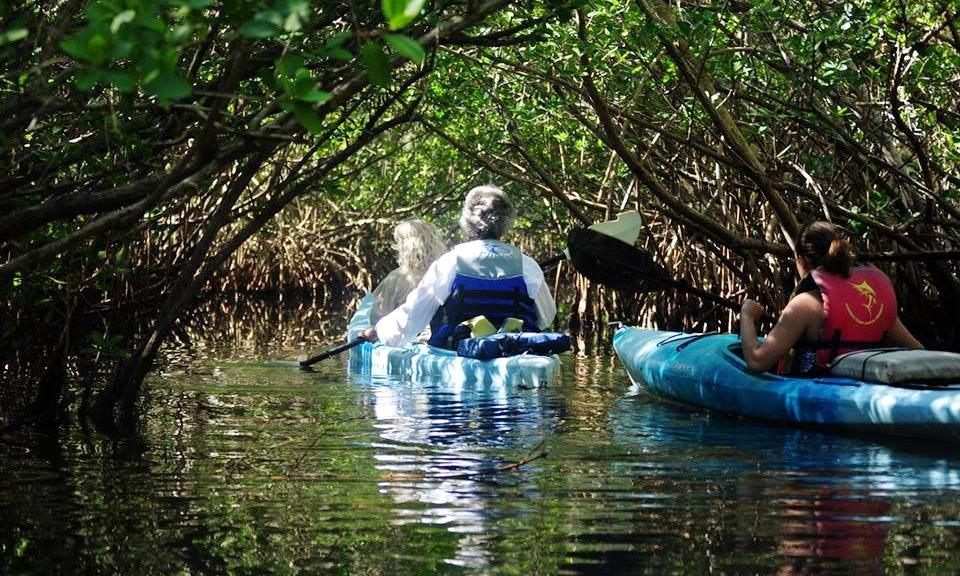 Cocoa Beach Kayak Tour