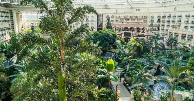 Gaylord Palms Resort Orlando Review