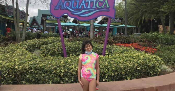 Slide Into Some Fun At Aquatica In Orlando, Florida
