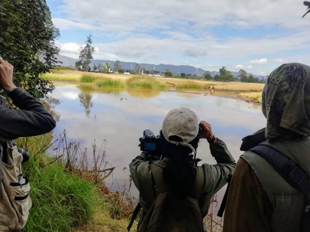 Wetlands and Streams
